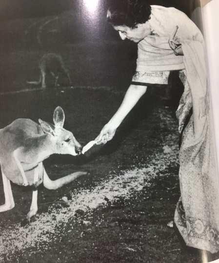 Indira Gandhi made environment a fashionable subject when it wasn't one in India: Jairam Ramesh