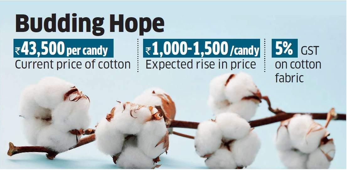 Cotton prices likely to rise