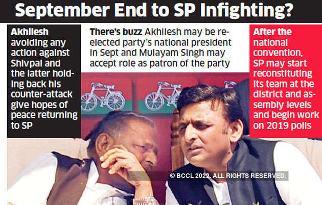 Busy putting own house in order, Samajwadi Party plays weak opposition