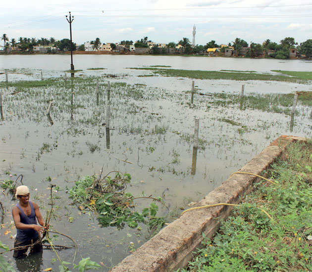 Perungalathur lake encroachment: How serious is government about preventing another Chennai flood?
