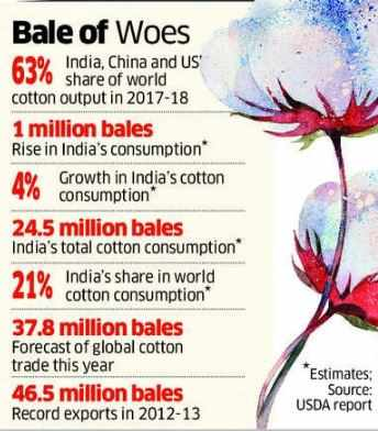 Cotton forward export contracts halve as global prices stay low