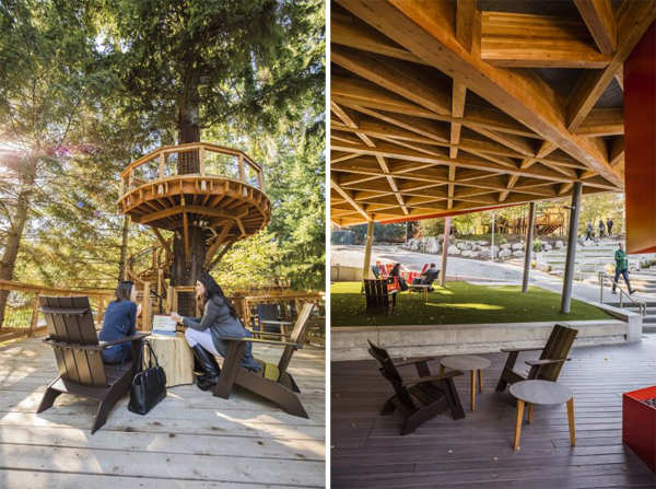 Microsoft Microsoft Creates Treehouse Offices To Help