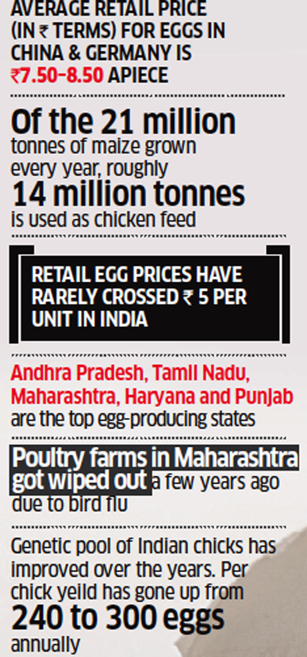 egg prices: How the egg has gone from leaving you light on