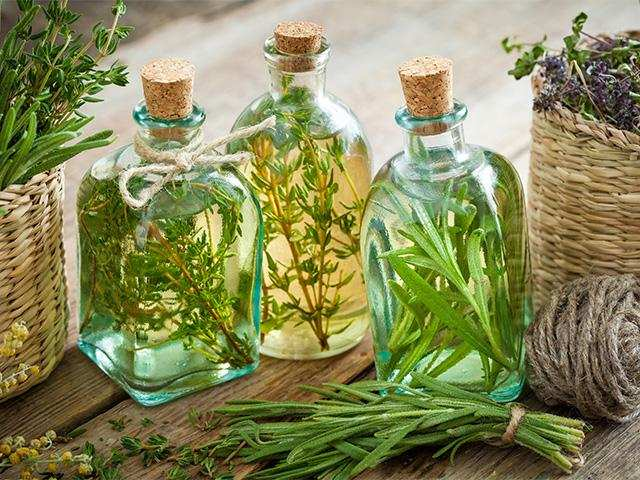 Rosemary essential oil also helps improve cognitive function in adults.