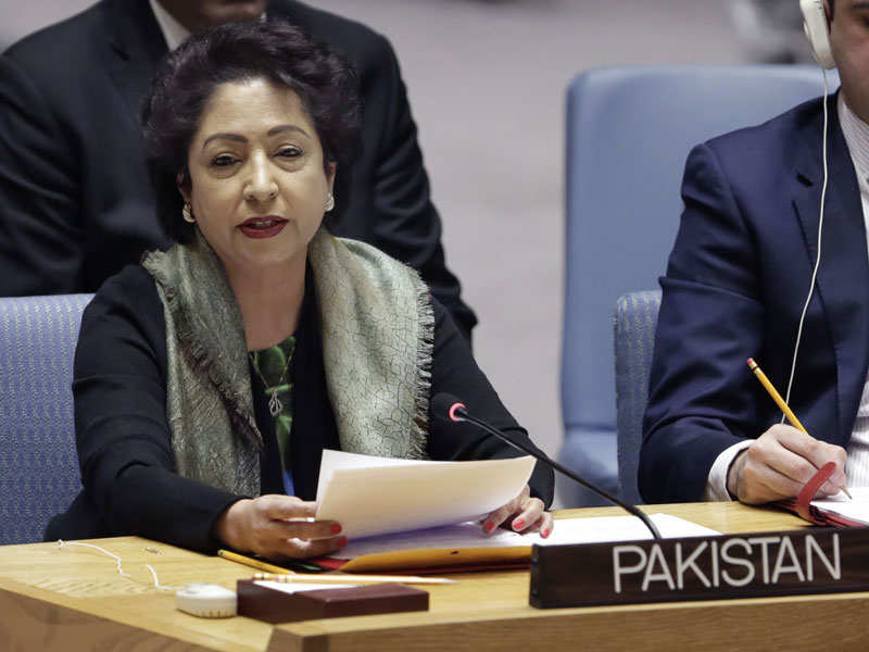 India, US and Afghanistan target Pakistan over terrorism at UNSC