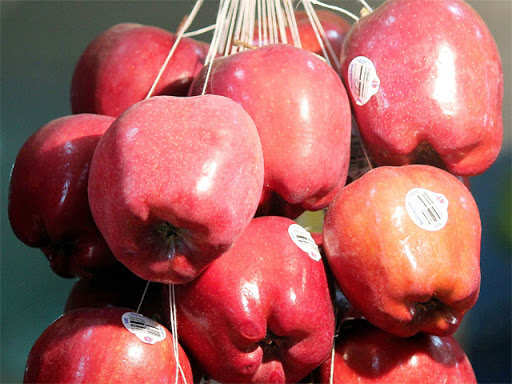 Higher import duty on US produce to up walnut, apple rates thumbnail