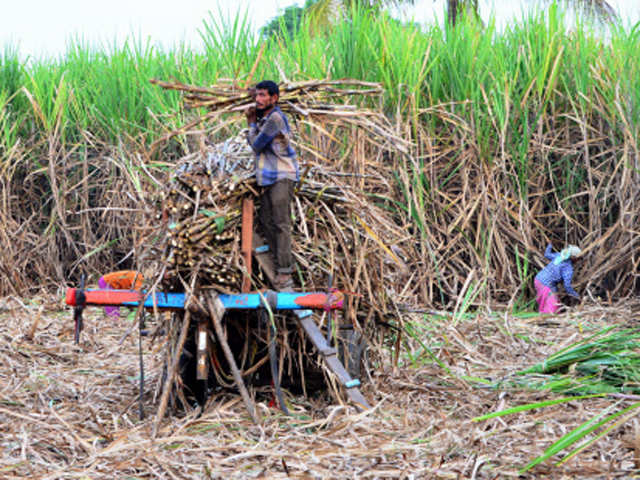 Cabinet committee to consider Rs 20/qtl hike in sugarcane price for 2018-19
