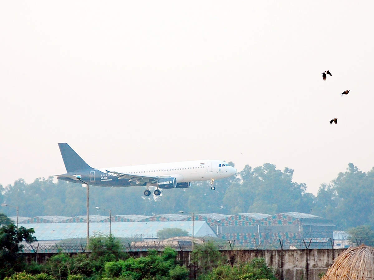 AAI to prepare project report for Sri Lanka's Palaly airport thumbnail