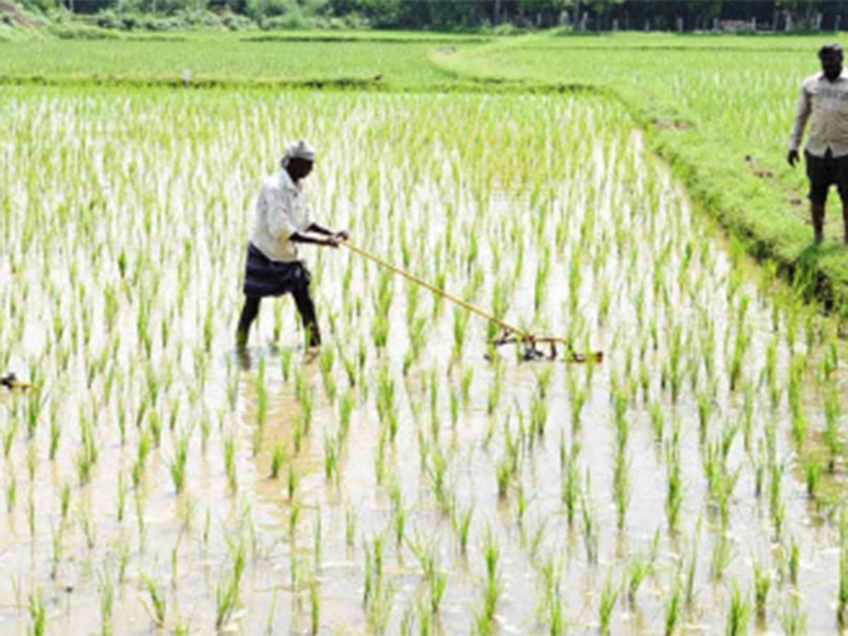 Government to rope in agency to evaluate farm mechanisation impact