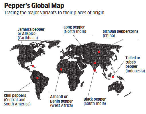 Why are there so many variants of pepper?