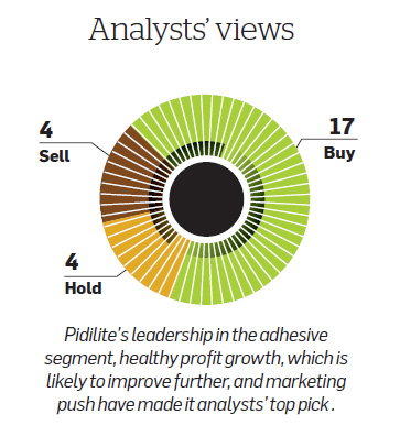 Healthy Profit Growth Makes Pidilite Analysts Top Pick The Economic Times
