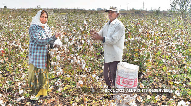 Cotton Growers