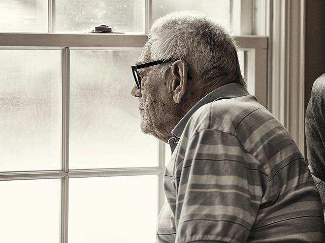 Californian shrub may hold key to treating Alzheimer's