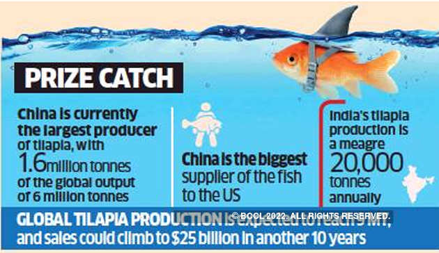 India looks to cast its net wider as China's fish exports