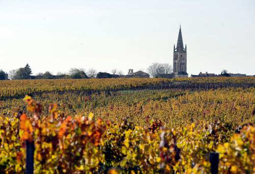 Vineyards producing one of the famous wines of the Bordeaux region at Saint-Emilion, near Bordeaux, southwestern France.
