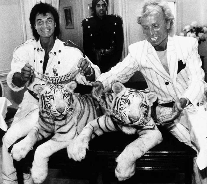 File photo of June 4, 1987: Las Vegas magicians Roy Horn (L) and Siegfried Fischbacher pose in New York, with their rare white tigers, Neva (left), a female, and Vegas, a male, during a stop at Van Cleef & Arpels jewelry before their departure for Germany.