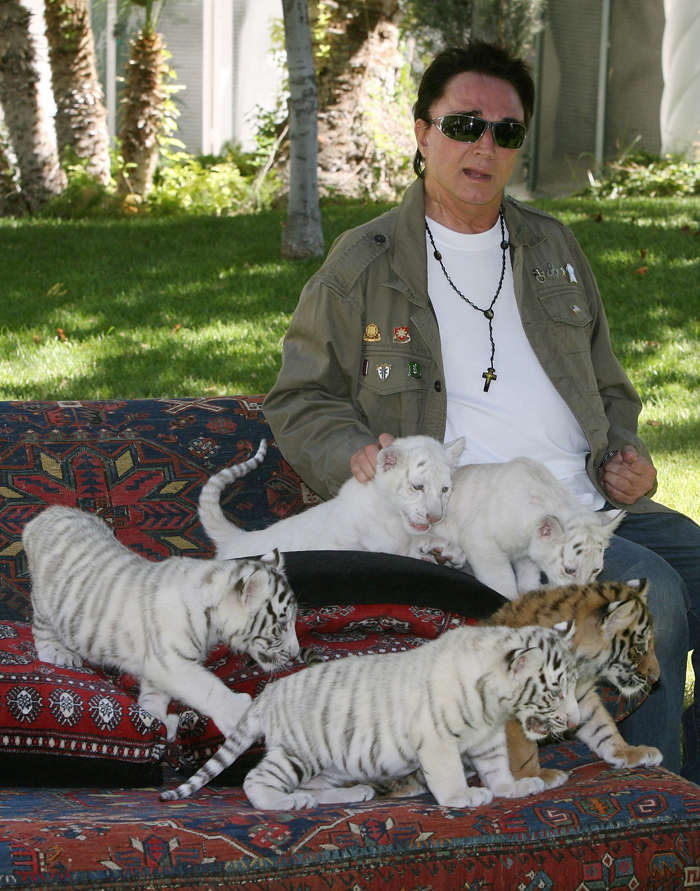 File photo of June 12, 2008: Illusionist Roy Horn poses with 6-week-old tiger cubs in Las Vegas, Nevada.