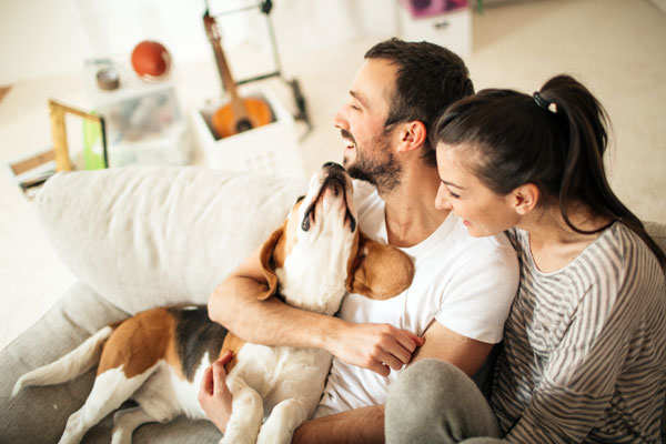 Your dog may also get clingy and follow you around the house, pace when it thinks you're leaving or drool. That also means the dog is experiencing separation anxiety and you need to work a little bit more to help it.