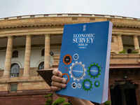 Nourishing dwarfs to become giants for MSME growth: Economic Survey 2019
