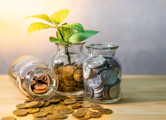 How to invest in liquid mutual funds