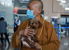 The monk who gives a new lease of life by feeding and caring for 8,000 stray dogs