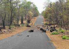 Naxals blow up police vehicle in Gadchiroli; at least 15 injured