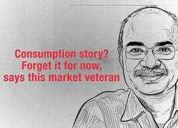 Consumption story? Forget it for now, says this market veteran