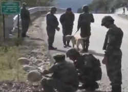 Major terror plot foiled in J&K after army defuses improvised explosive devices