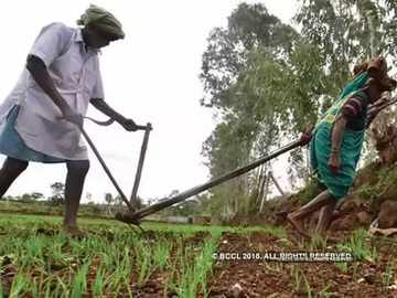 Agriculture India | Economy News - Economic Times