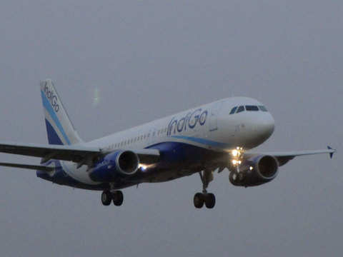 IndiGo aims to expand its board to 10-12 members