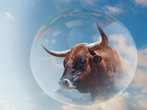 Is the stock market in a bubble?