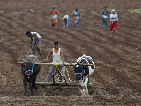 Why India needs to act swiftly on pragmatic plans to fix its agrarian crisis