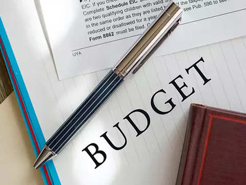 What are five steps that need to be taken to develop a budget?