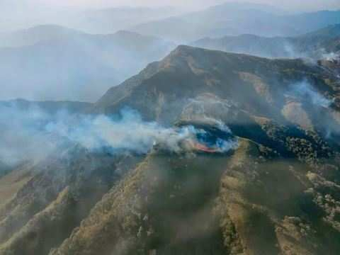 No fire spotted in Nagaland's Dzukou range; operations to be scaled down: DFO