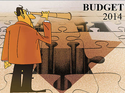 Budget 2014 is likely to please everyone, but it dodges challenges, says Aditya Narain of Citi India