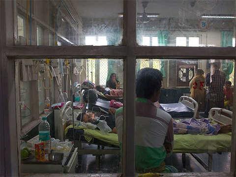 Delhi govt sets up helpline for chikungunya, dengue patients