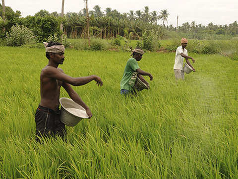 Centre working consistently towards doubling farmers' income