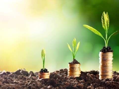 Elara Tech raises $35 million in debt financing from Citi Singapore