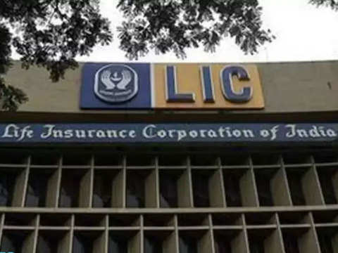 Govt wants LIC to be more vigilant on governance issues