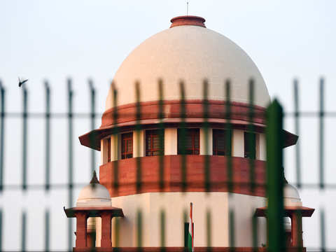 Human-animal conflict a problem, government should consider task force on it, says SC