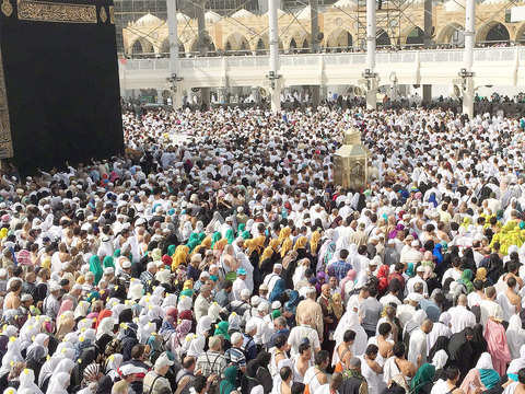 Haj committee member resigns citing 'interference' by minority affairs ministry