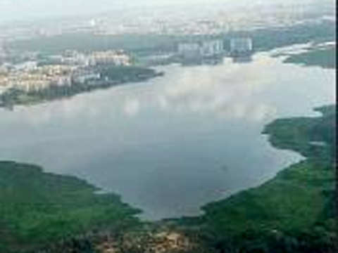 Can revive the Bengaluru's Bellandur lake within a year: German firm