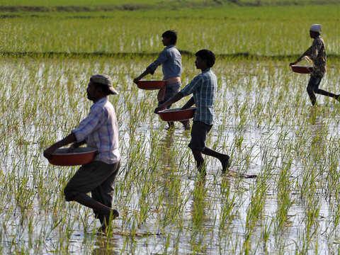 Fertiliser Min seeks add'l Rs 23,000 cr to clear Jan-Mar subsidy bill