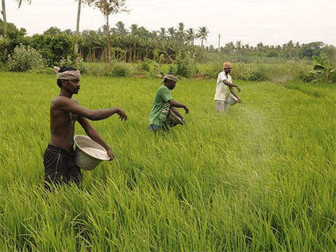 Govt needs to focus on agricultural reforms, SMEs to push private investment