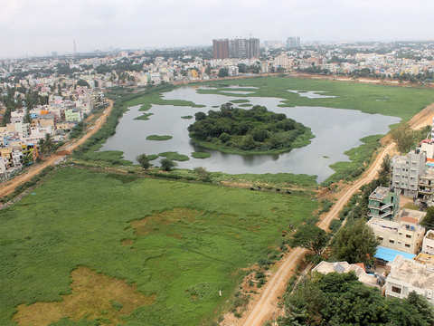 Lake revival: Bengaluru's Sarakki may welcome 'thousand birds' soon