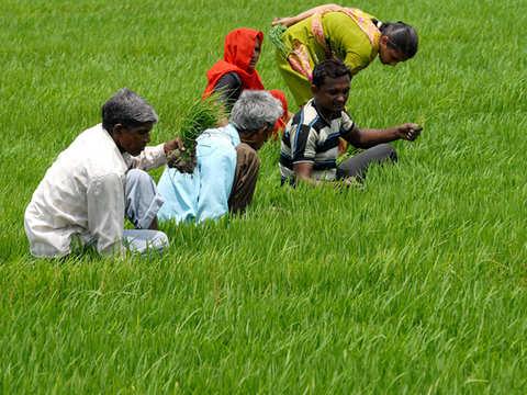 Depoliticise farm loan waivers: Y V Reddy, former RBI governor