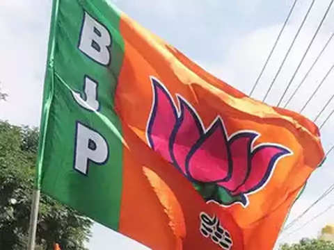 BJP to drop all sitting Chhattisgarh MPs this time