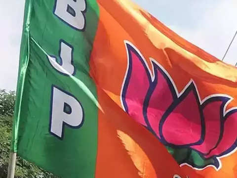 BJP Anand Lok Sabha seat candidate accused in post-Godhra riots