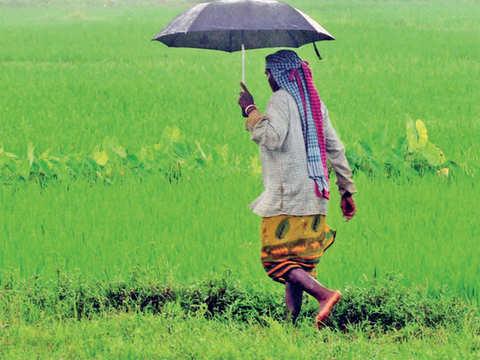 Meteorological Department promises a splash this monsoon