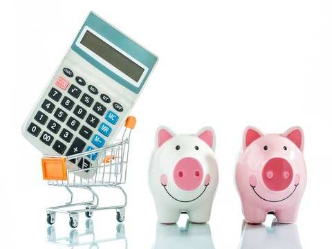 Can I stop investing in Reliance Tax Saver Fund?